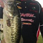 Froggin' Tips from Westy Stick Dan Wells