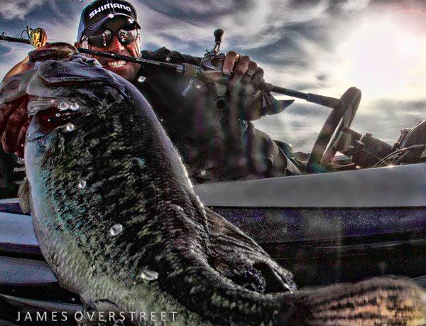 shot-of-the-day-Overstreet-Dave-Mercer-bass-fishing-151217