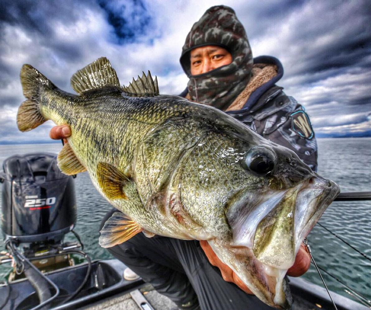 shot-Japanese-largemouth-bass-fishing-160105