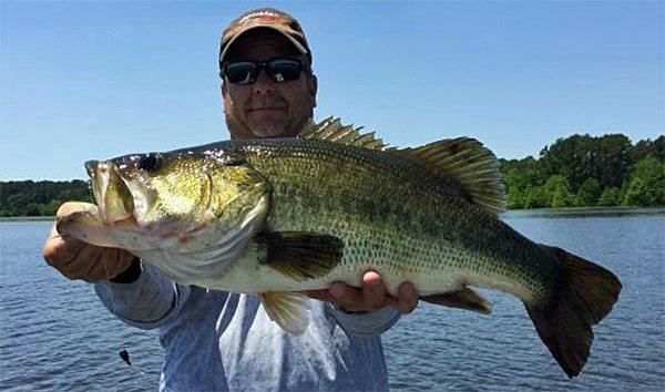 melon-Toledo-Bend-1024-largemouth-bass-fishing-160512